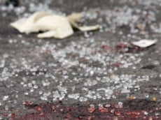 В Мордовии в ДПТ разбились мать и ее 5-летняя дочь