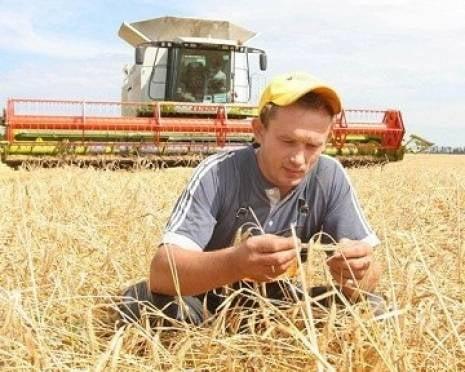 Агропромышленному комплексу Мордовии не хватает рабочих рук