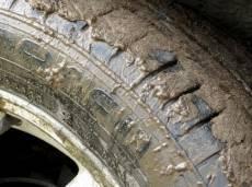 Водителей Саранска заставят мыть колеса