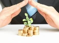 Интересы мордовских бизнесменов защитят три совета