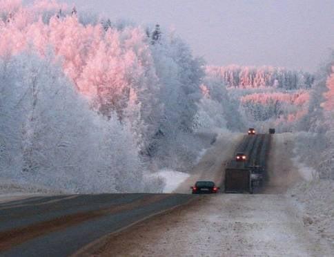 На федеральных трассах Мордовии никому не дали замерзнуть