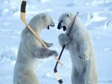 Хоккейный клуб «Мордовия» оштрафован за срыв матча в Самаре