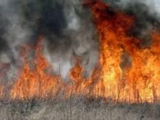 В Мордовии разбушевалась огненная стихия