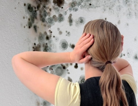 В районе Мордовии коммунальщиков наказали за дом с плесенью