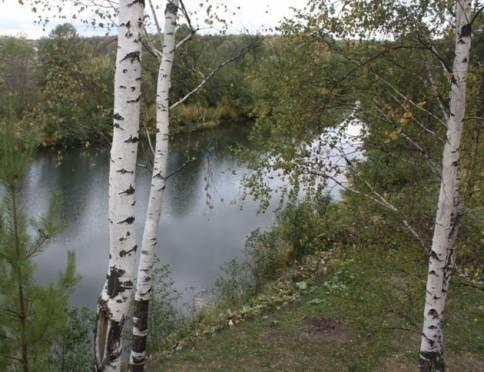 В Мордовии на берегу Мокши обнаружен труп мужчины