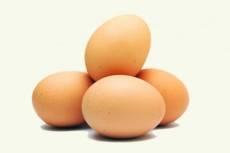 Яйца из Мордовии признаны «золотыми»