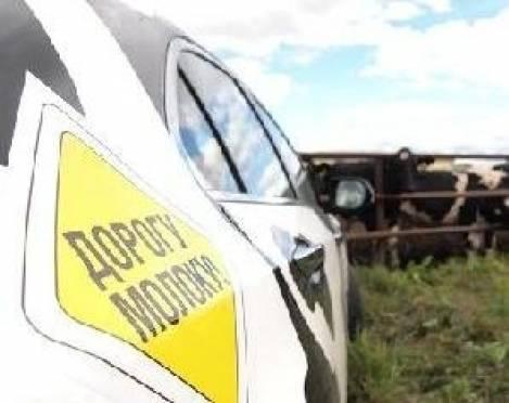 Автопробег «Дорогу Молоку!»  минует Мордовию