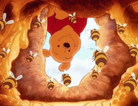 """В Саранск снова """"слетятся"""" пчеловоды со всей республики"""