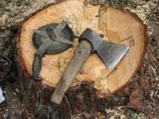 В Мордовии уничтожается уникальная природная зона