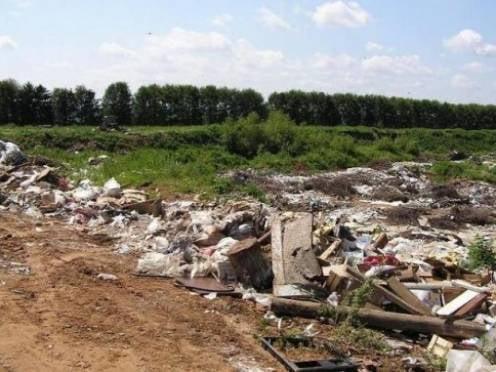 В Мордовии растет число стихийных мусорных свалок