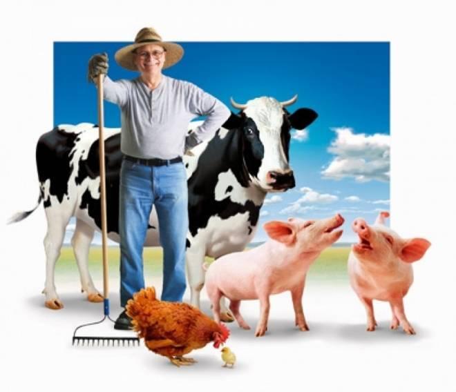 12 августа в Мордовии состоится сельхозвыставка
