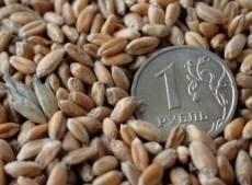 Мордовии дадут 400 млн рублей на развитие сельского хозяйства