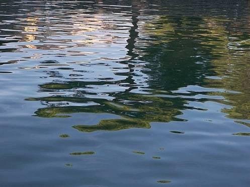 В Мордовии утонул нетрезвый купальщик