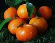 Жители Саранска смогут купить продукты к новогоднему столу на праздничной ярмарке