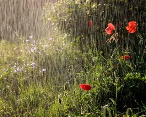 Жителям Мордовии не стоит ждать завтра хорошей погоды