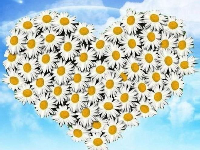 В Саранске пройдут торжества в День семьи, любви и верности