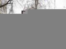 """Работа-победитель фестиваля социальной рекламы """"Гвоздь"""" заняла место на улицах  Саранска"""