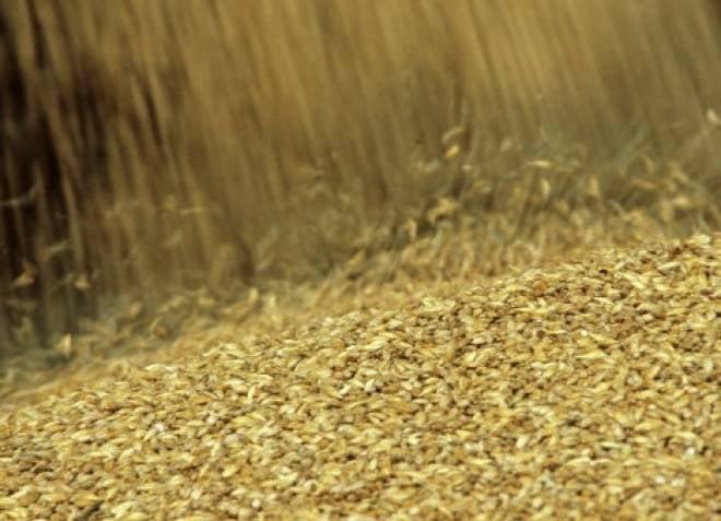 Мордовии не удалось выйти в лидеры ПФО по урожайности зерновых
