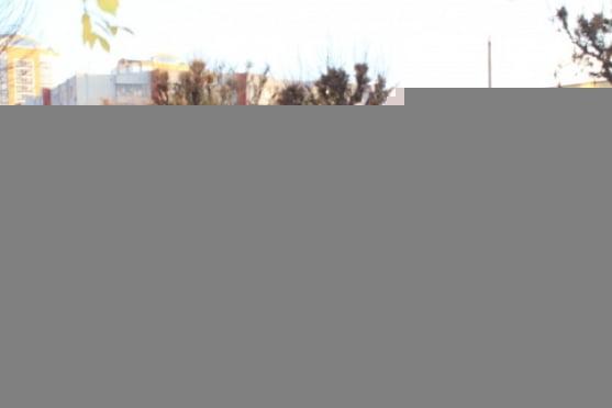 Гаишники Саранска перестали «жалеть» пешеходов
