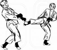 """Мордовские спортсмены проявили себя в """"жестком"""" карате"""