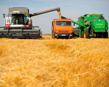 Атяшевский район Мордовии первым доложил об окончании уборки зерновых