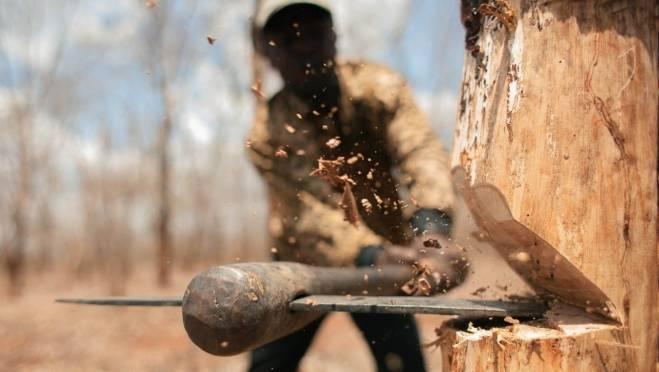 В Мордовии в 2017 году чёрные лесорубы «наломали дров» почти на 14 млн рублей