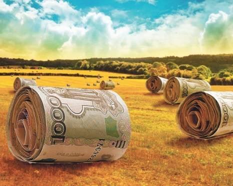 РСХБ предоставил 3,5 млрд рублей на сезонные работы в Мордовии
