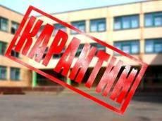 С 29 января все саранские школьники уйдут на вынужденные каникулы