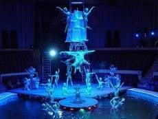 В Саранске пройдут большие гастроли московского цирка на воде «АКВА»