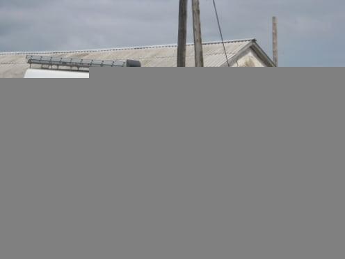 В Мичурино в горящей ферме погиб 81 телёнок