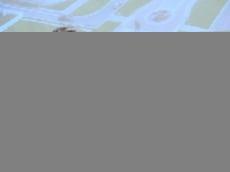 Глава Мордовии стал главным героем фильма «Зодчий»