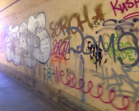 Жителям Мордовии придется самостоятельно отмывать граффити