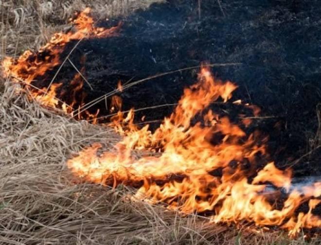 Жителям 11-ти районов Мордовии следует опасаться пожаров