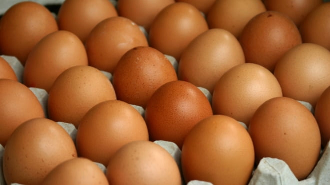 Экономные жители Саранска купили 300 тон сахара и 2000 яиц