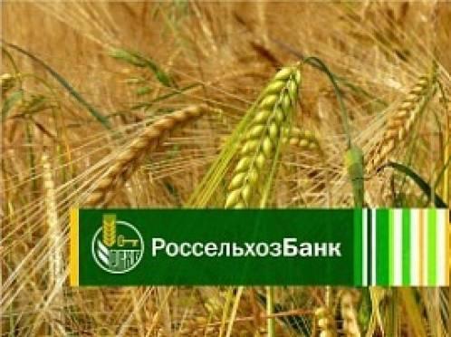 Мордовский филиал Россельхозбанка предоставил аграриям более 12 млрд рублей в рамках госпрограммы