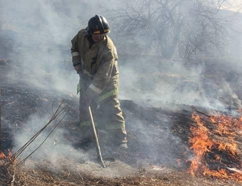 В Мордовии сухая трава горит десятки раз за сутки