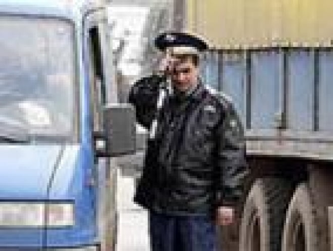 В Мордовии инспекторы ДПС в ходе проверки документов раскрыли кражу баранов