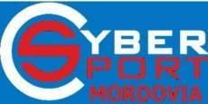 В Саранске состоится турнир по киберспорту