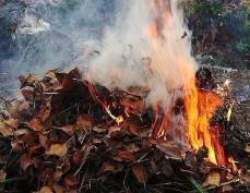 В Мордовии пьяный мужчина прикорнул на сухой листве и чуть не сгорел