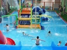 В Саранске выбрали возможное место для аквапарка