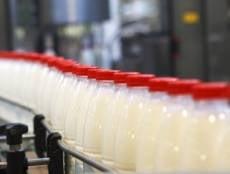 «Данон» назвал молочный завод в Саранске одним из лучших