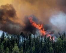 Пожары на Байкале вызвали беспокойство в Мордовии