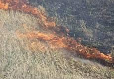 В Мордовии штрафуют нарушителей требований пожарной безопасности