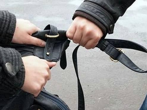 В Мордовии поймали тусовщика-грабителя