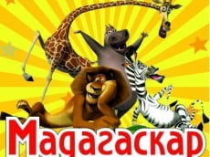 Кинотеатр «Мадагаскар» в Саранске показывает доступное кино