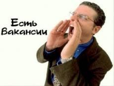 Более 3000 рабочих мест в Саранске предлагает госпортал «Работа в России»