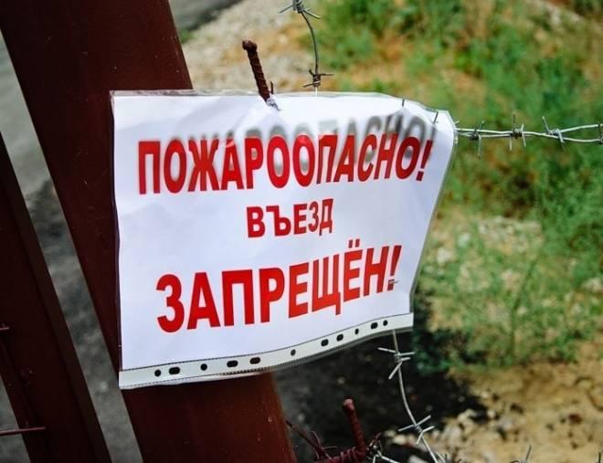 На всей территории Мордовии ограничено посещение лесов
