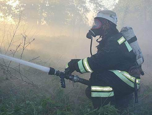В Мордовии распространившийся на 1000 кв.м. огонь угрожал селу