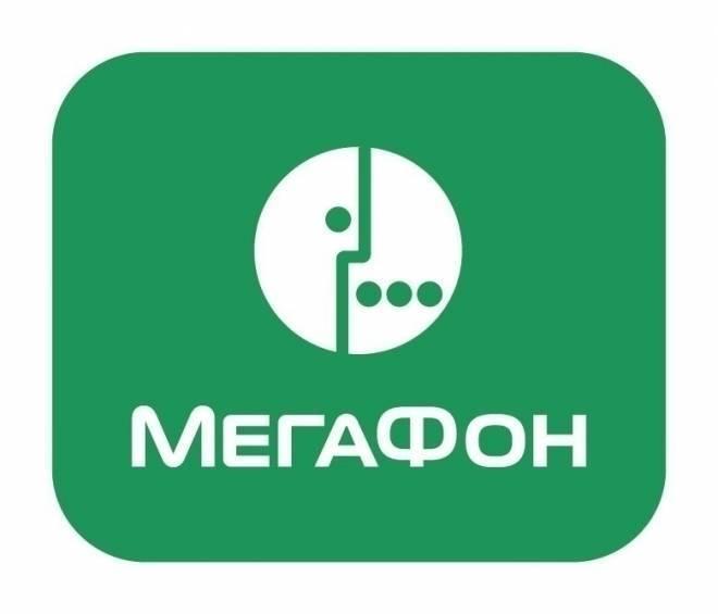 МегаФон предложил бизнесменам Мордовии тариф «под заказ»