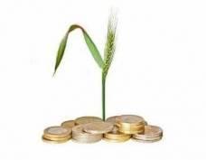 Аграрии Мордовии не могут расплатиться с кредитами